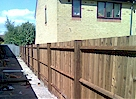 AFTER - New Featheredge Fencing - Click image to enlarge it.